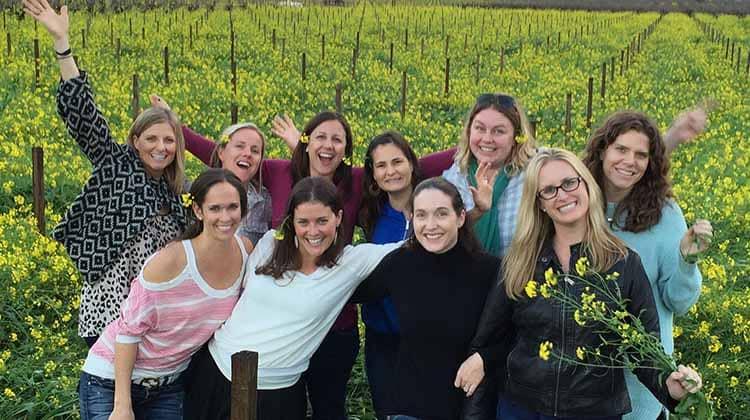 Timeless Napa Wine Tours Services
